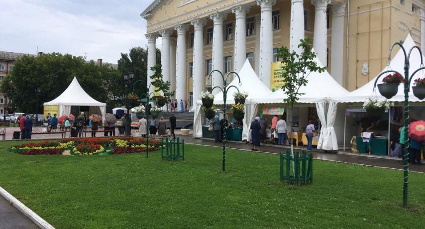 Общий вид выставки в Павлово